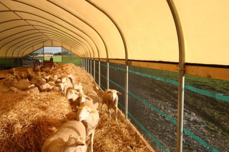 Как сделать загон для овцы 198
